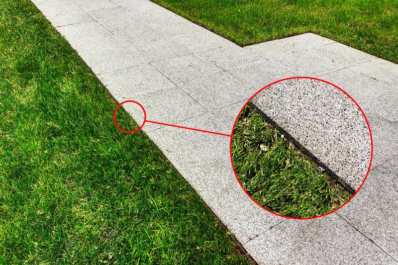 Separador de jardim ecosalix for Separador jardin
