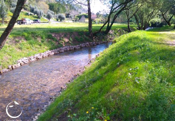 Ribeira dos Frades, Lapedo